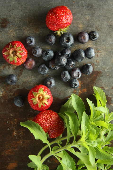 summer berries and stevia