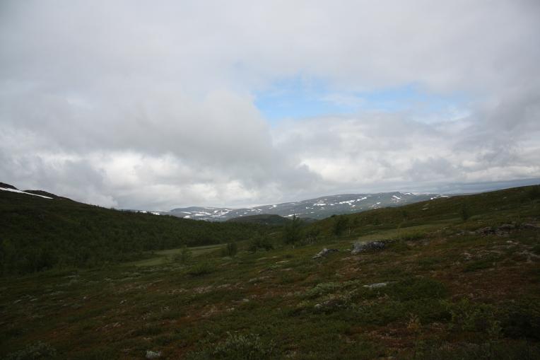 rolling nordic fell